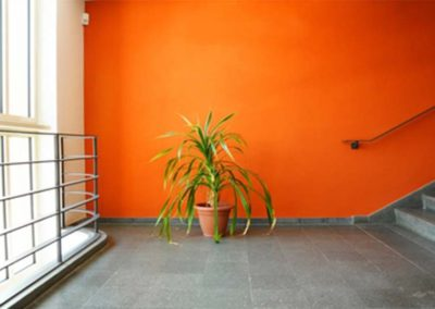 Repaint-Gallery-9
